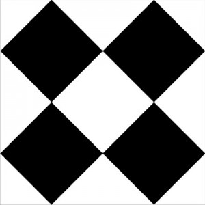 P Large Checker_resize